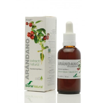 EXTRACTO NATURAL ARANDANO XXI 50 ml SN