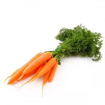 Zanahoria Manojo Ecologica