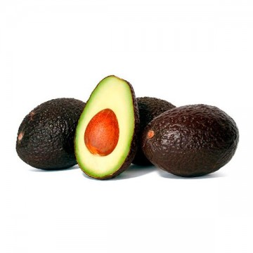 Aguacate Pequeño Hass Ecologico