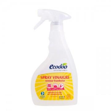 Vinagre Frambuesa Spray Bio 500ml Ecodoo